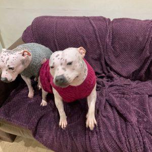 Poppy & Lola