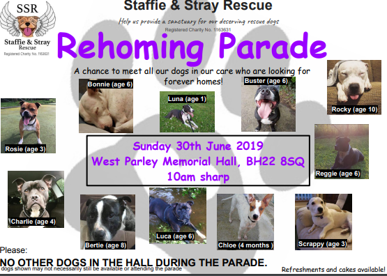 Rehoming Parade June 2019