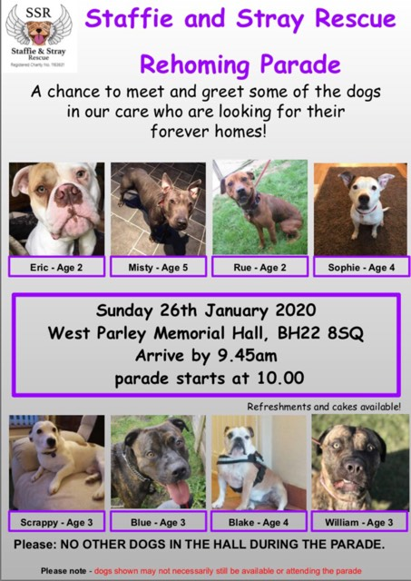 January 2020 Rehoming Parade